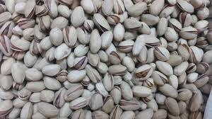 فروش پسته بادامی