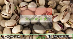 فروش پسته در عراق