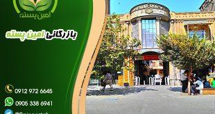 خرید و فروش پسته در تهران